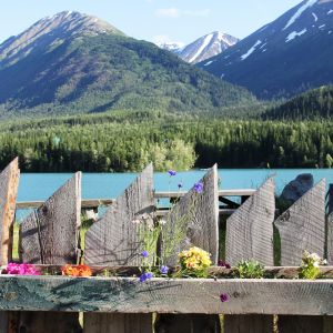 Flowers and Kenai Lake